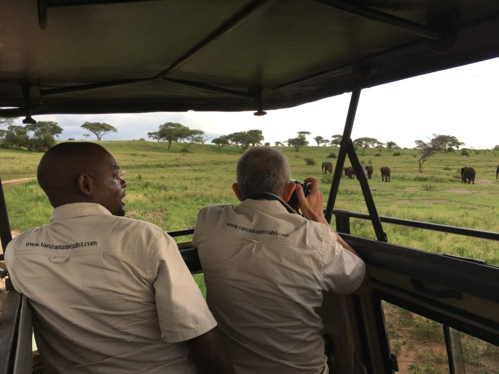 Photographier les éléphants avec Tanzania Specialist