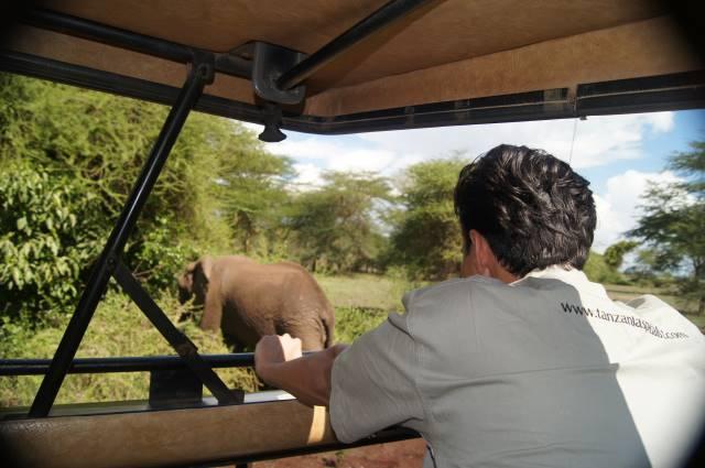 Parc national ruaha safari